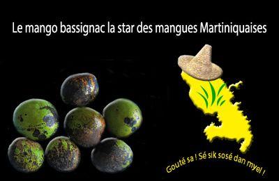 Le mango bassignac la star des mangues Martiniquaises