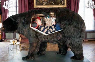 Ours avec chambre