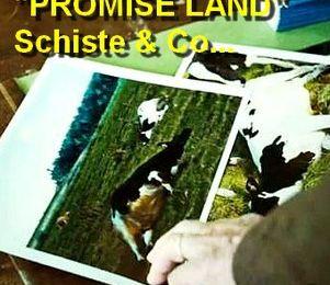 """GAZ DE SCHISTE actualités : """"Promised Land"""", le film qui dit """"non au gaz de schiste"""" - 17 avril 2013 dans les salles."""