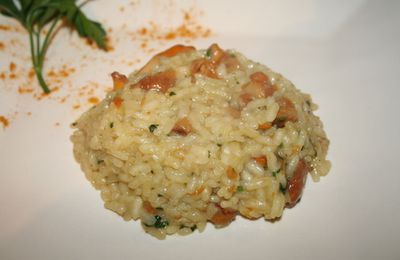 Risotto aux girolles, italian style from guidmann