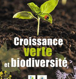 Bois Raméal Fragmenté , Earth Hour, et autres tartufferies éco-responsables