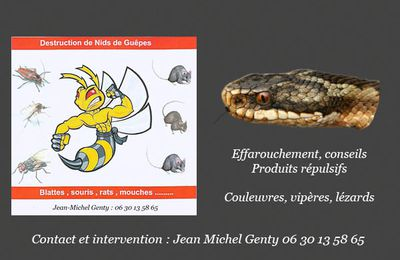 Animaux nuisibles : Reptiles, Chenilles, Ragondins