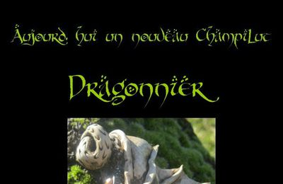 Dragon et Dragonnier