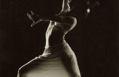 La danse flamenca