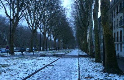 L'avenue de Paris a revêtu son manteau blanc