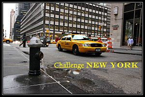 "Challenge ""New York en littérature"""