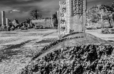Carthage sectionnée
