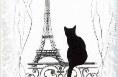 Les chats de Paris (1)