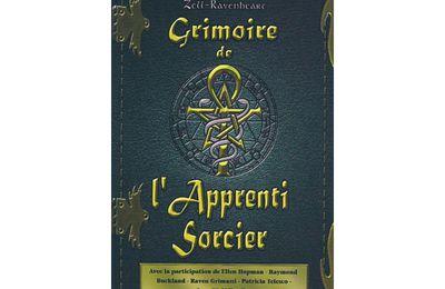 """Critique du livre """"Le Grimoire de l' Apprenti sorcier"""" d'Obéron Zell-Ravenheart"""
