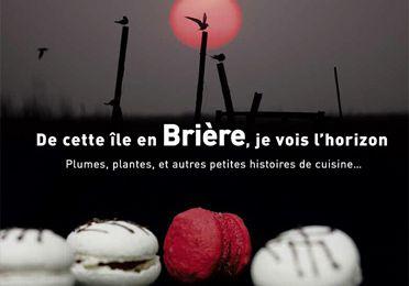 De cette île en Brière, je vois l'horizon