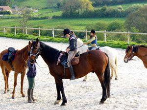 Equitation au Haras du Haut Val à Bellême