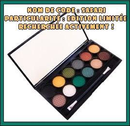 Mission impossible du jour : trouver la palette Sleek Safari