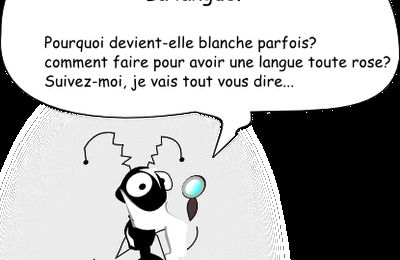 la langue blanche: BD j'apprends avec Farmer...