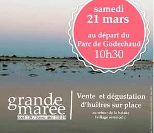 Le 21 mars la Mairie d'Aytré vous invite à une Balade sur l'estran d'Aytré (grande marée)