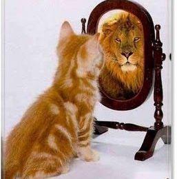 Le miroir de la transparence : vers une tv-réalité politique ? ♥