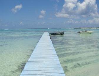 Ponton devant les Tipaniers - Moorea - Polynésie