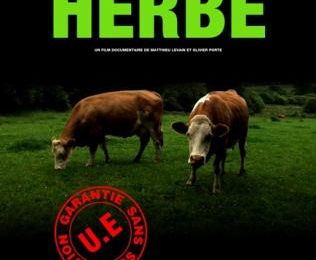 HERBE (documentaire)