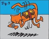 Paradoxe du chat beurré