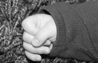 de blog beauté à blog bébé