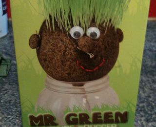 Mon Mr Green