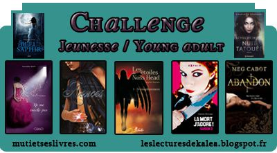 Challenge jeunesse/ young adult 2