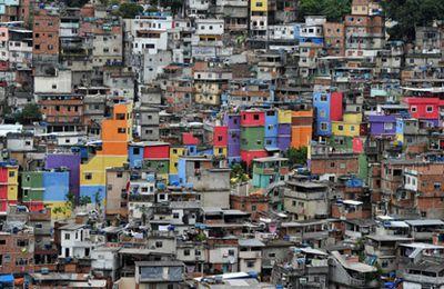 Lire au Brésil (suite )