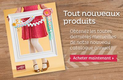 Nouveau catalogue annuel 2013-2014 Stampin'Up!