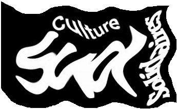 Communiqué Sud-Culture Solidaires : non à la restriction des libertés sur le net !