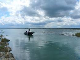 La baie des Veys et Chez Roger, ça vous dit quelque chose ?