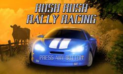 Rush Rush Rally Racing (R4) for WiiWare