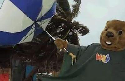 Météo: Sortez les tongs... et le parapluie !