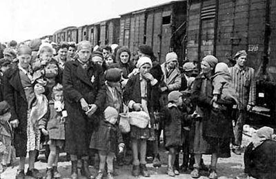@CorinneLepage: Auschwitz: tristement d'actualité