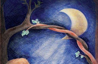 l'arc de la lune