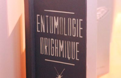 Anthomologie origamique