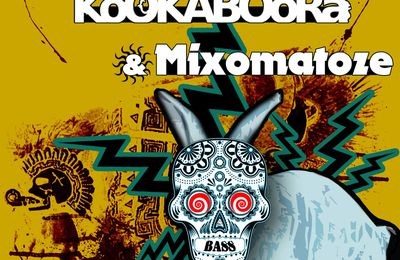 == 17 mars 2012 - KOOKABOORA in Radical Night @ VBSC ==