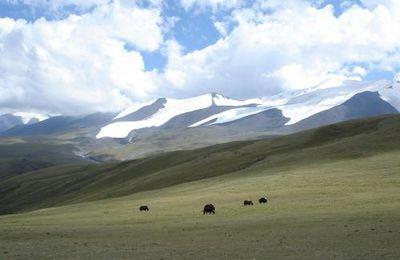 MONGOLIE - Trek en Altai, massif des Tsambagarav