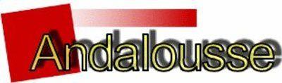 Il était une fois, Radio Andalousse...