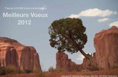 Voeux remarquables pour 2012 ...