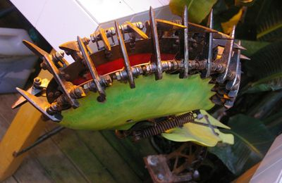 plante carnivore de l'ile aux machines