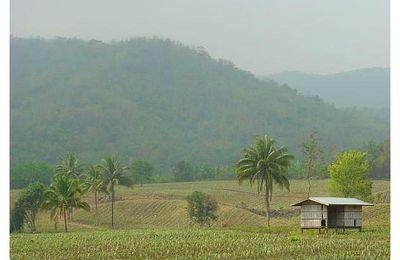 Province de Phetchaburi (1)