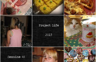 Project life 2013