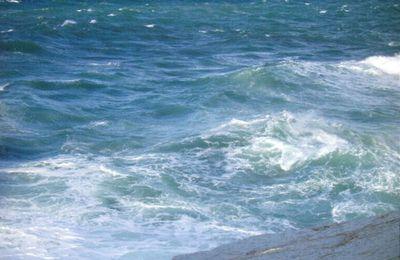 Ô mer