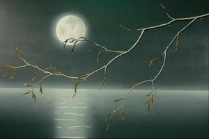 Pleine lune du 9 sept 14, un moment de partage avec vous