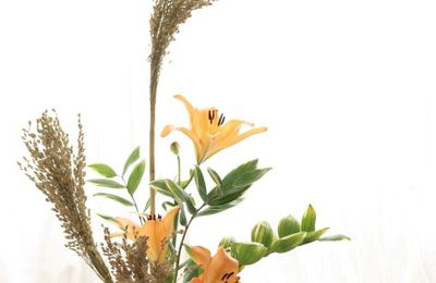 Ikebana de lis orange