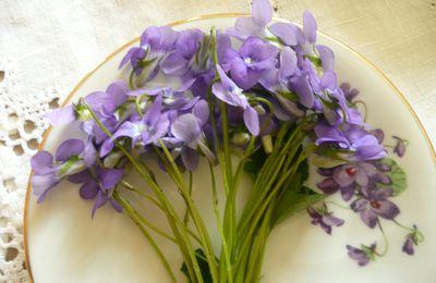 Bouquets de violettes,