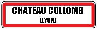 L'Olympique Lyonnais s'effondre en Bourse - Le coup de poker du Grand Stade.