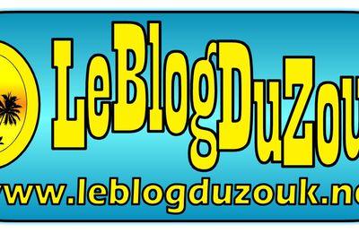 LE NOUVEAU LOGO DU BLOG DU ZOUK: www.leblogduzouk.net