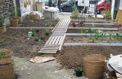 Plantations au jardin partagé