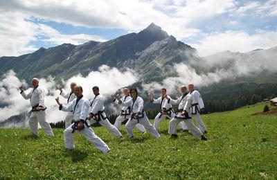 Stage d'été en Suisse 2014