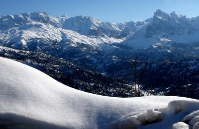 La neige de février 2012 en Kabylie.
